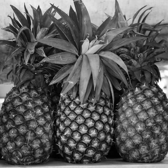 pineapple-1064931_1920_650